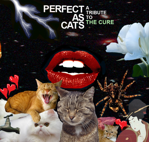 cure-tribute