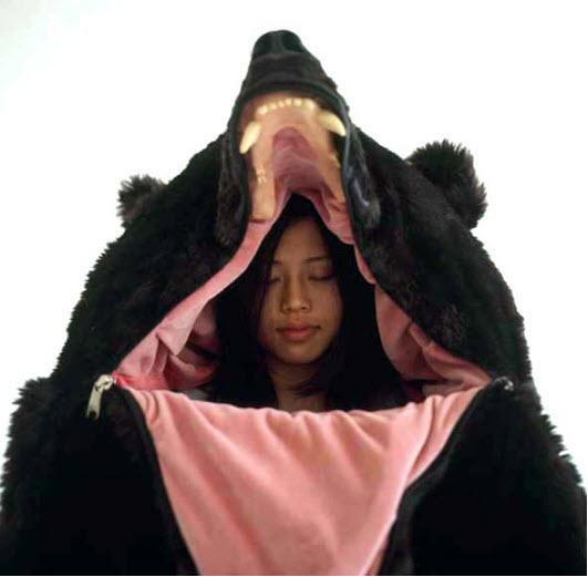 bear31