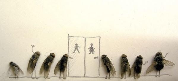 Dead Fly Art4