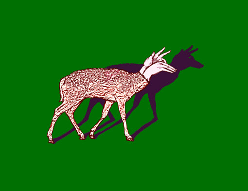 Shadow Puppet-deer detail3
